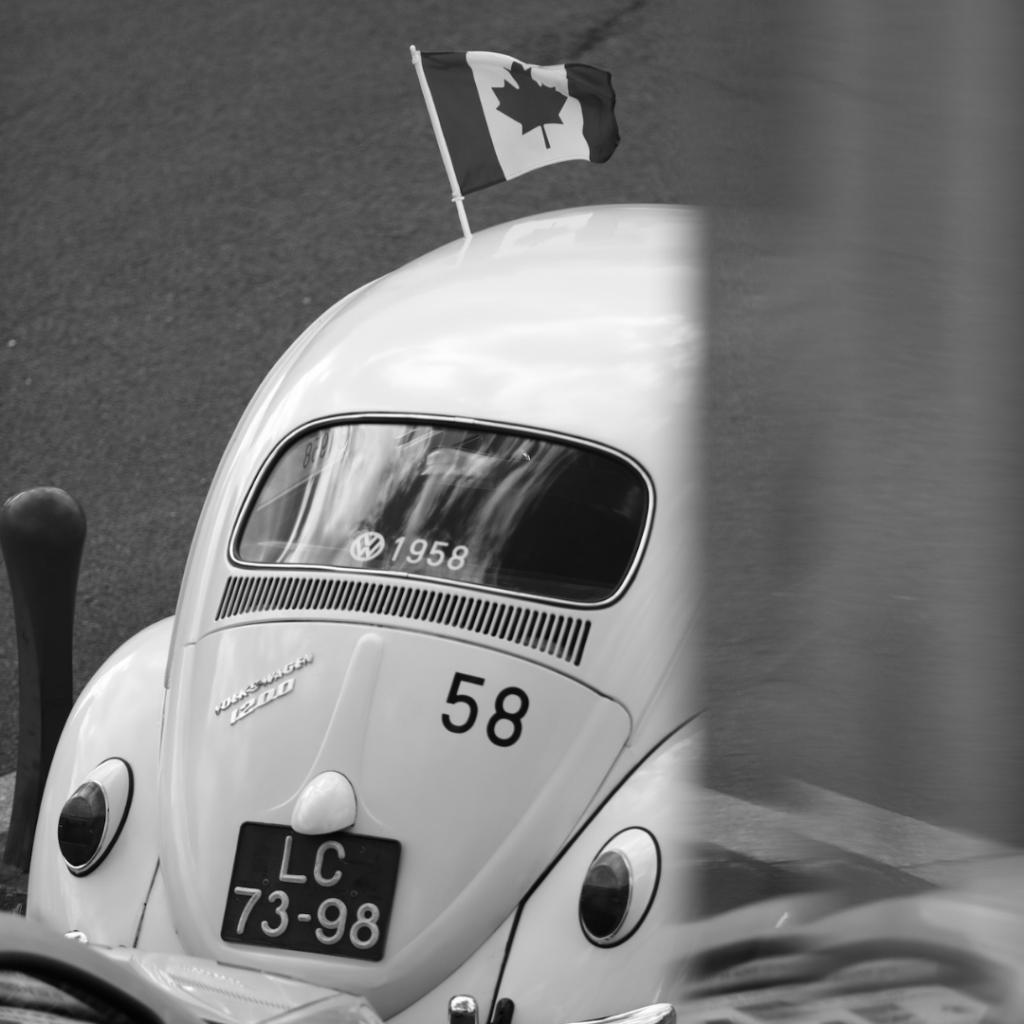 Drapeau Canadien et coccinelle